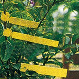 ETICHETTE IN PLASTICA CON FILO ZINCATO (h 1,8 cm)