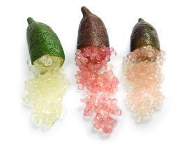 "LIMONE CAVIALE ""Citrus australasica"" (Finger Lime) -POLPA ROSA-"