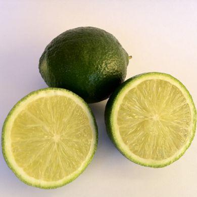 LIME di Thaiti ( Citrus Latifolia )