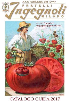 Vendita semi on line vendita piante online vendita sementi - Fratelli ingegnoli piante ...