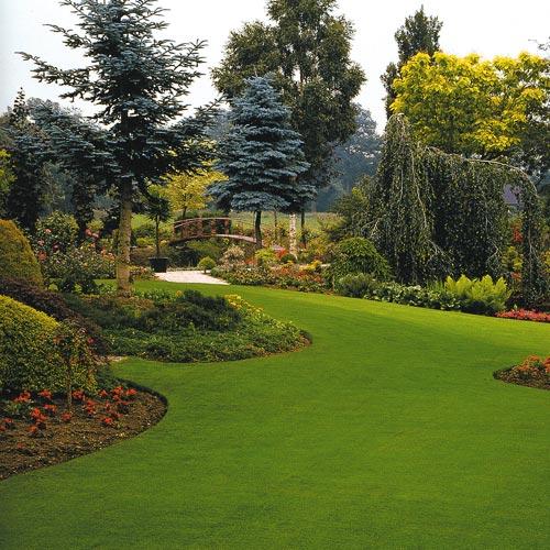Progettazione spazi verdi ingegnoli for Ingegnoli piante